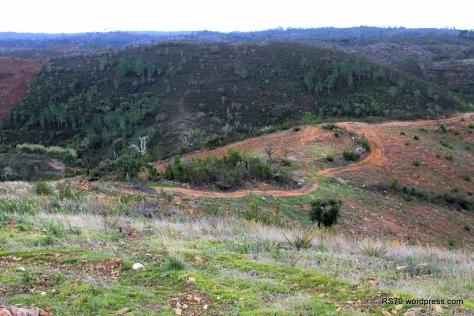 Passados dois anos ainda  são visíveis as marcas do grande incêndio que devastou parte da Serra em 2012